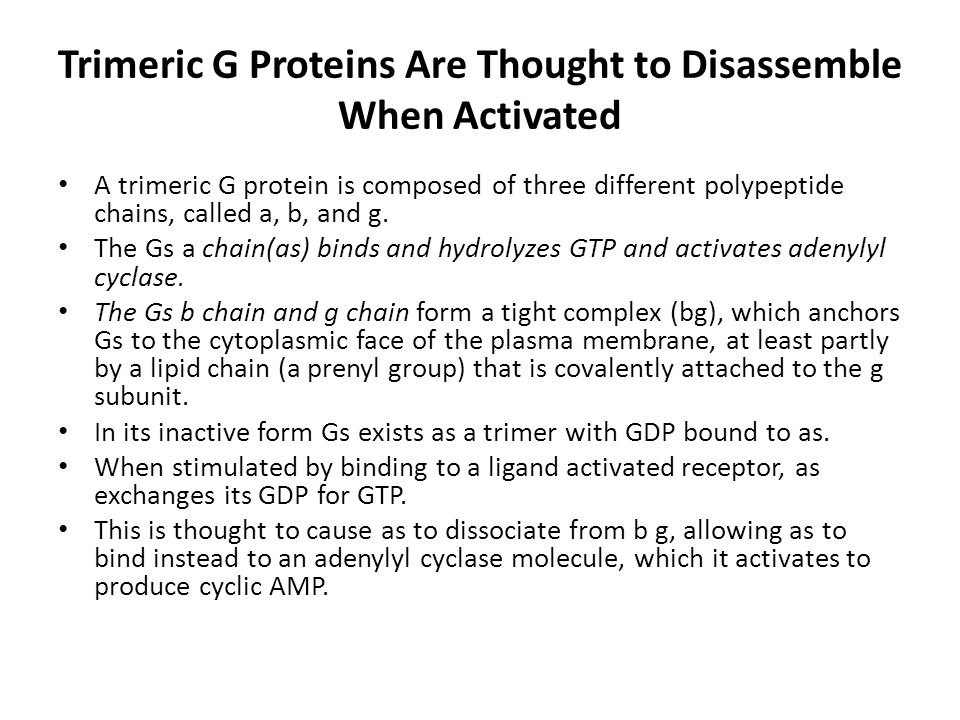 Trimeric G Proteins Are Thought to Disassemble When Activated