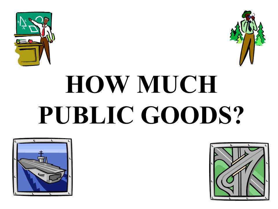 HOW MUCH PUBLIC GOODS