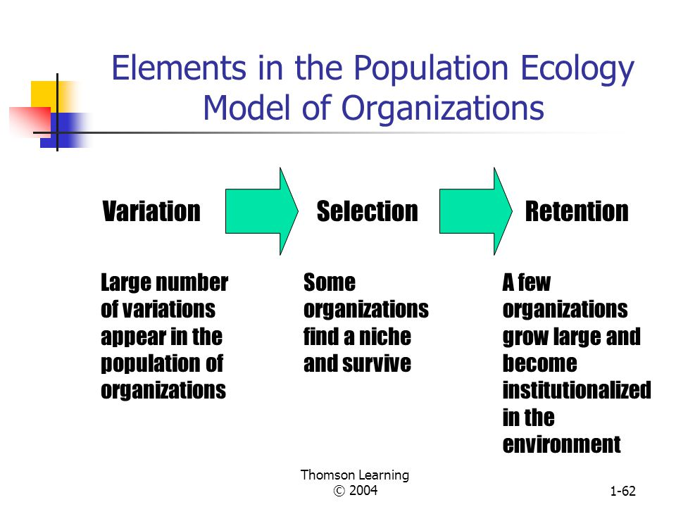 Elements in the Population Ecology Model of Organizations