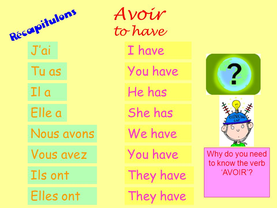 Why do you need to know the verb 'AVOIR'