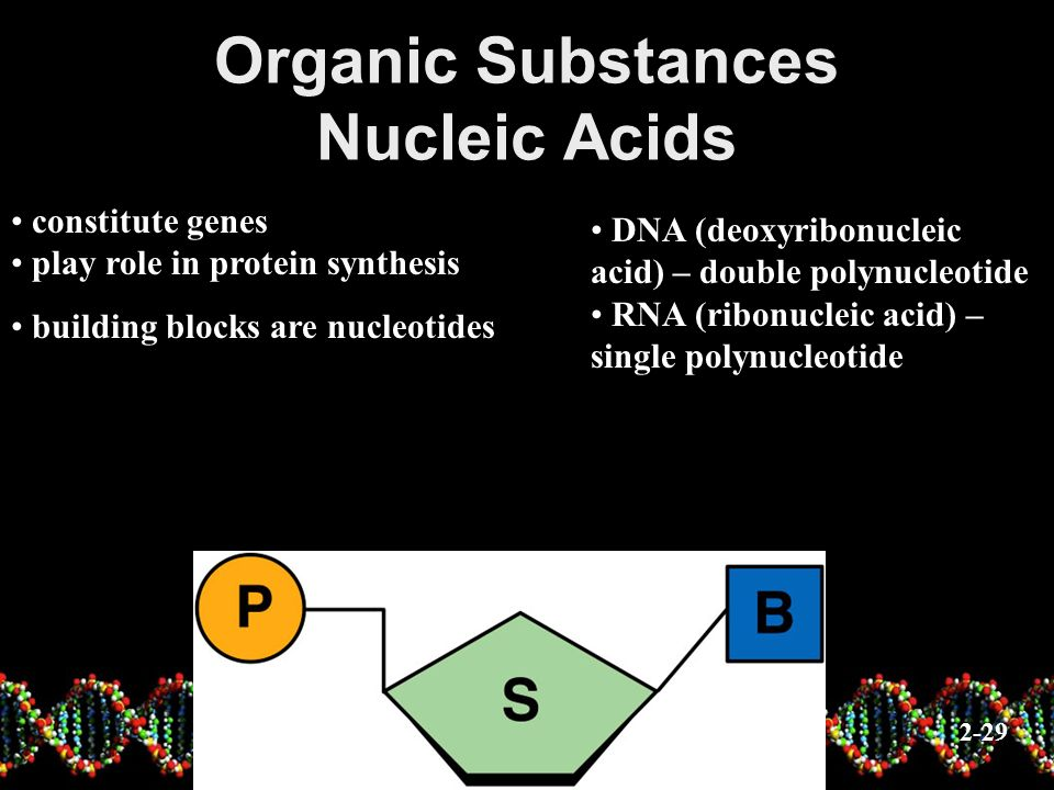 Organic Substances Nucleic Acids