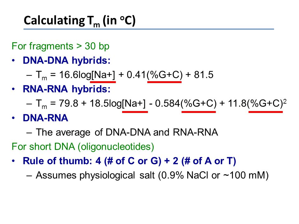 Calculating Tm (in oC) For fragments > 30 bp DNA-DNA hybrids: