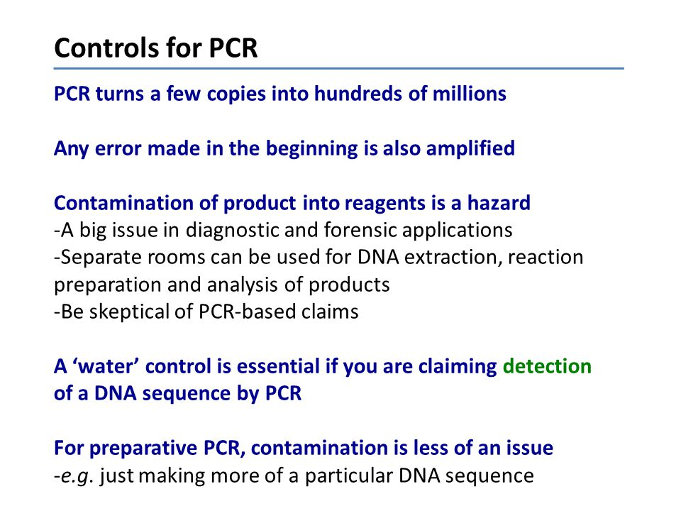 Controls for PCR PCR turns a few copies into hundreds of millions