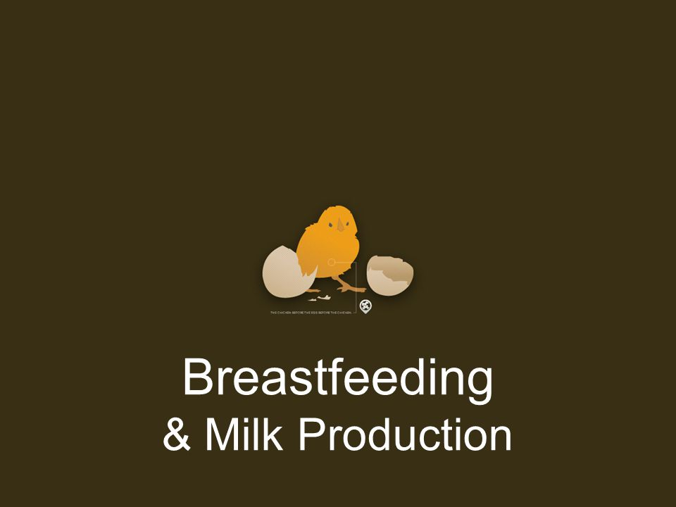 Breastfeeding & Milk Production