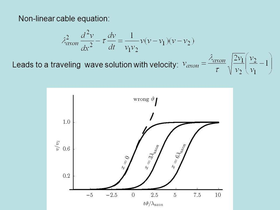 Non-linear cable equation: