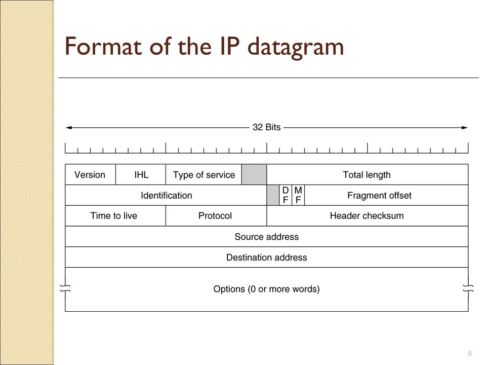 Format of the IP datagram