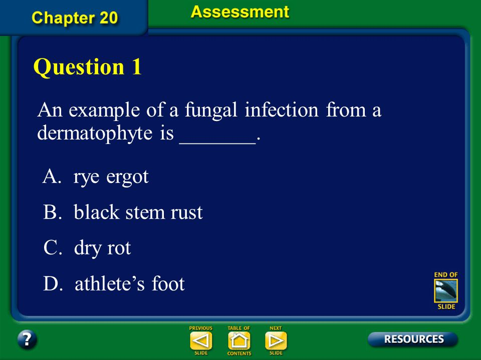 Question 1 An example of a fungal infection from a dermatophyte is _______. A. rye ergot. B. black stem rust.
