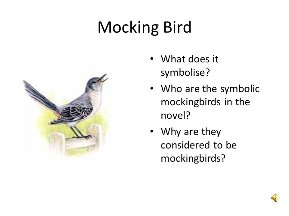 the symbol of the mockingbird lies Whoops there was a problem previewing to kill a mockingbird - full text pdfpdf retrying.
