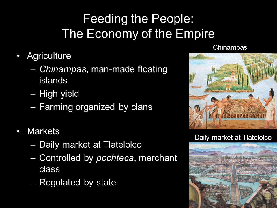 Feeding the People: The Economy of the Empire