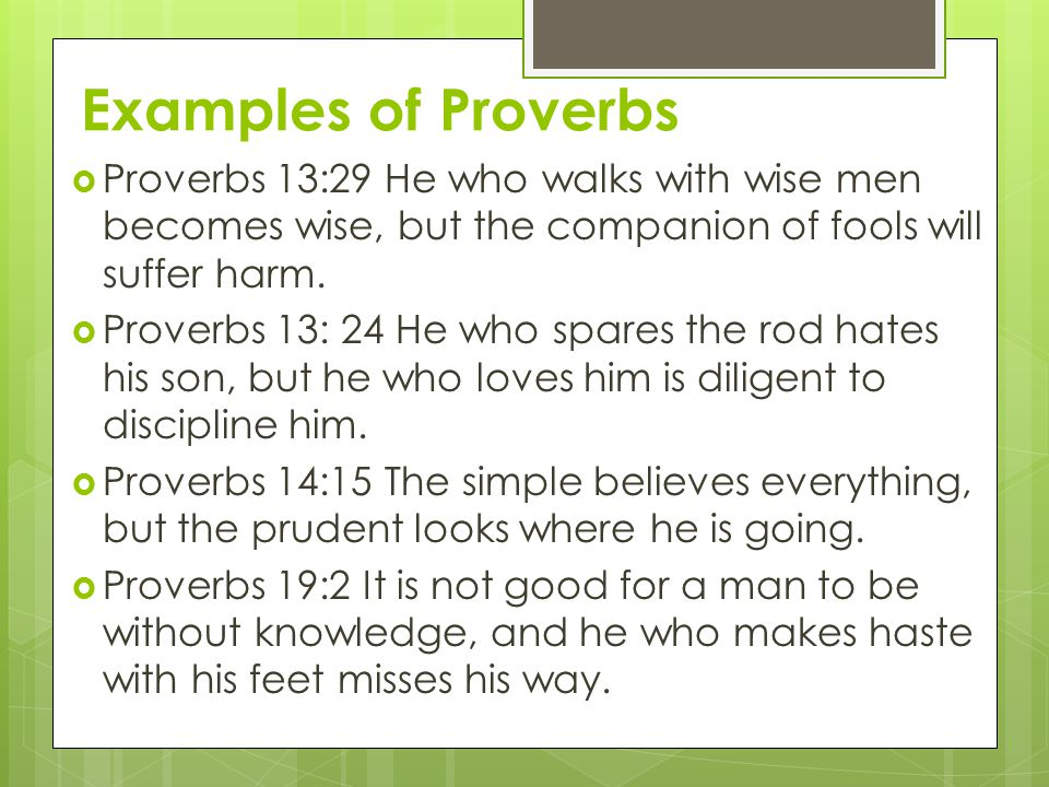 Examples of Proverbs Proverbs 13:29 He who walks with wise men becomes wise, but the companion of fools will suffer harm.