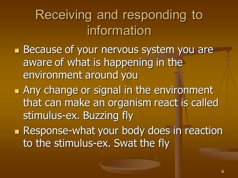Receiving and responding to information