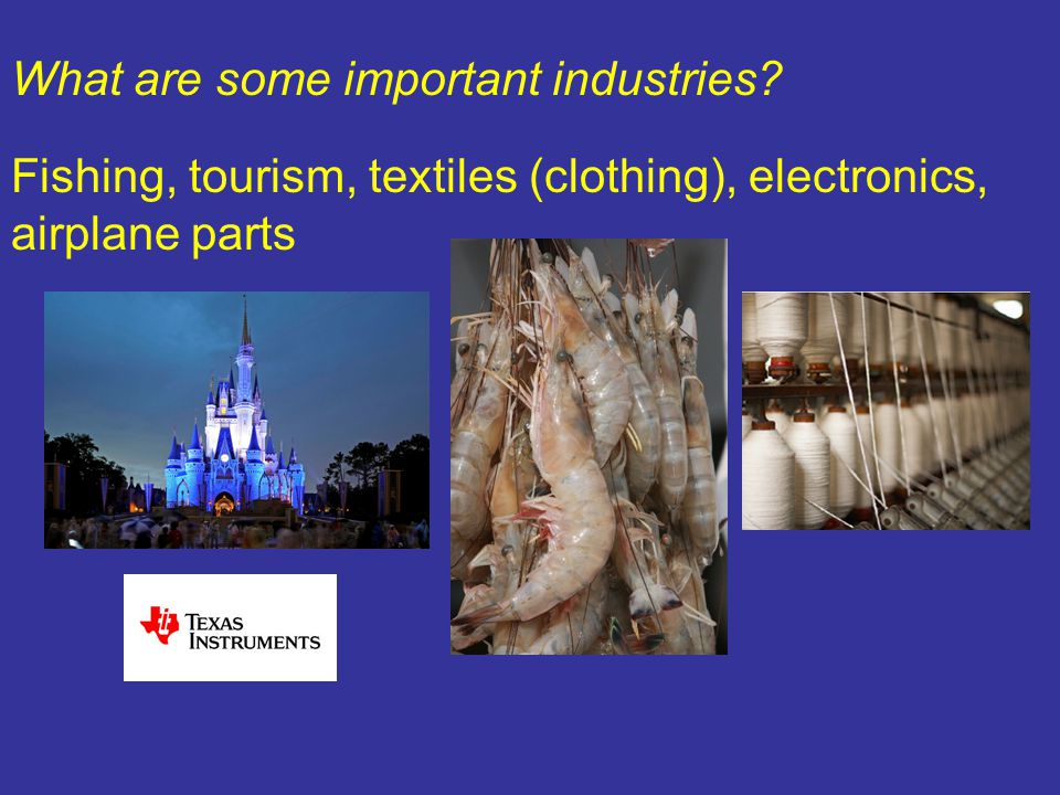 What are some important industries