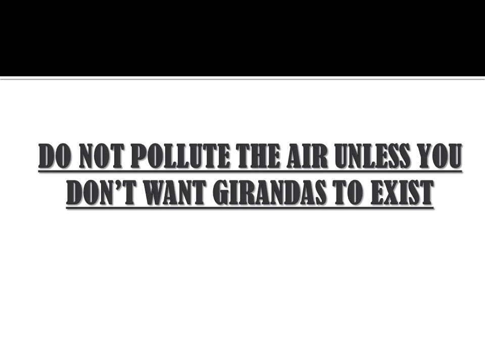 DO NOT POLLUTE THE AIR UNLESS YOU DON'T WANT GIRANDAS TO EXIST