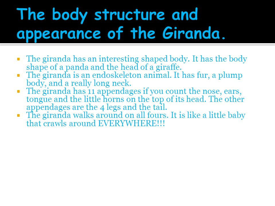 The body structure and appearance of the Giranda.