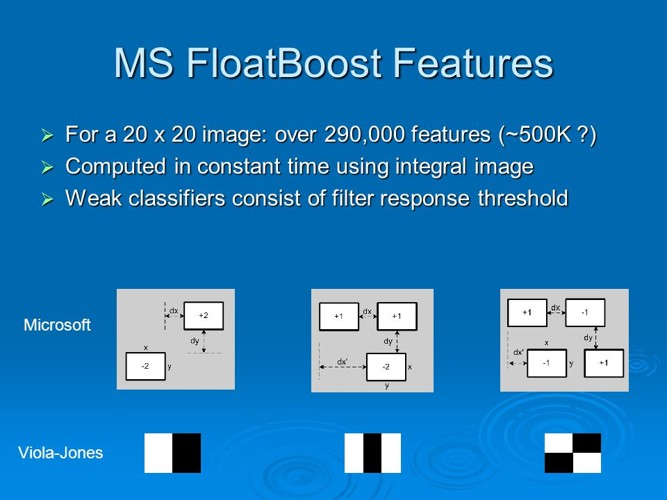MS FloatBoost Features