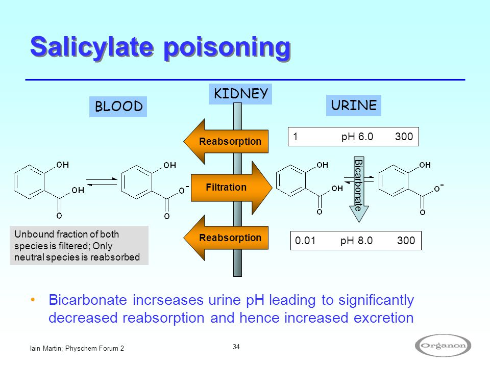 Salicylate poisoning KIDNEY. BLOOD. URINE. Reabsorption. 1 pH 6.0 300. Bicarbonate.