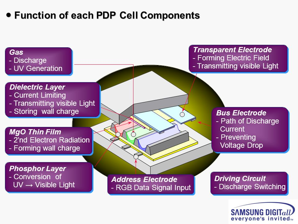 ● Function of each PDP Cell Components