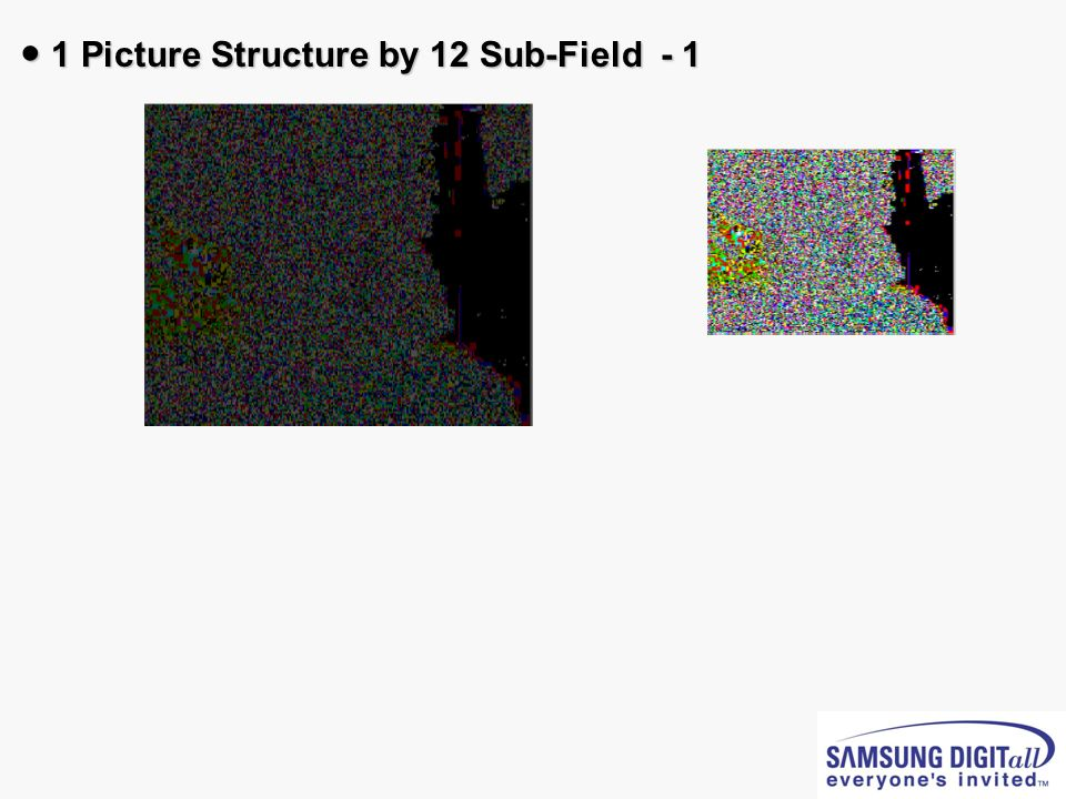● 1 Picture Structure by 12 Sub-Field - 1