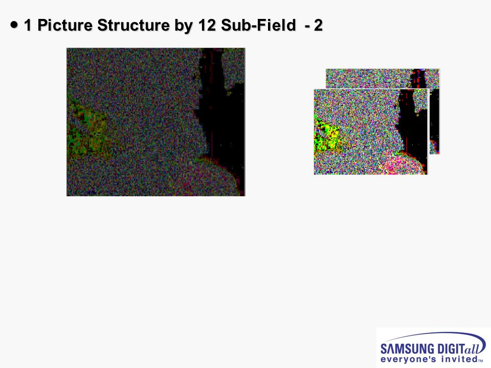 ● 1 Picture Structure by 12 Sub-Field - 2