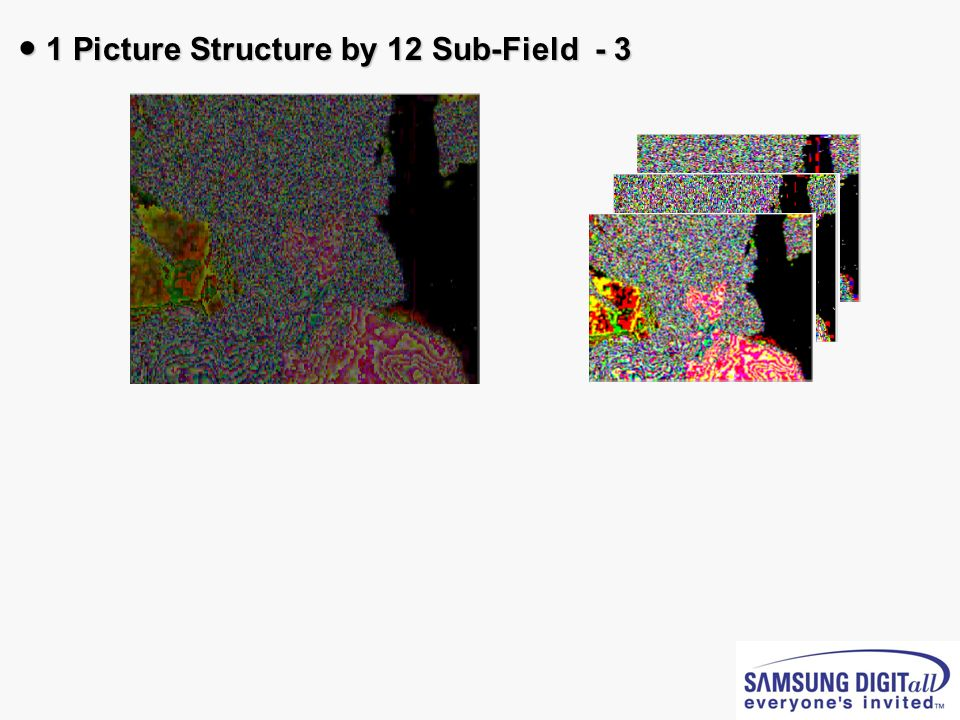 ● 1 Picture Structure by 12 Sub-Field - 3