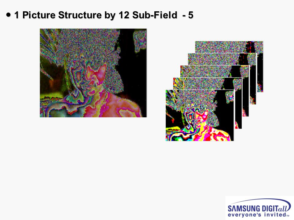 ● 1 Picture Structure by 12 Sub-Field - 5