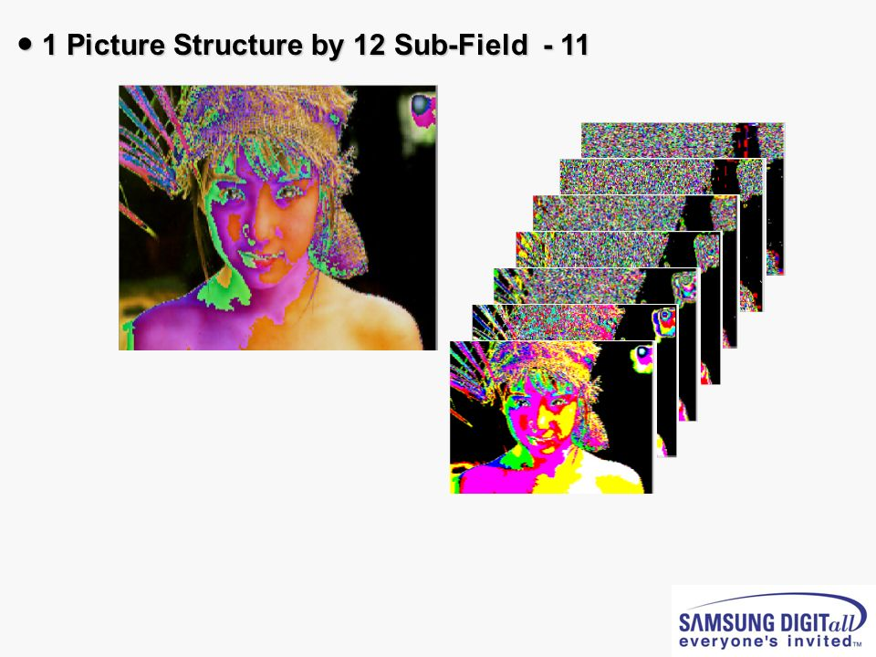 ● 1 Picture Structure by 12 Sub-Field - 11