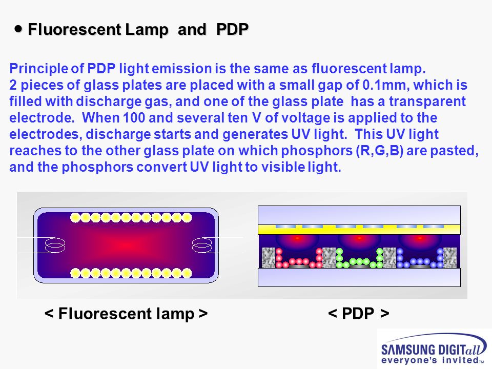 ● Fluorescent Lamp and PDP