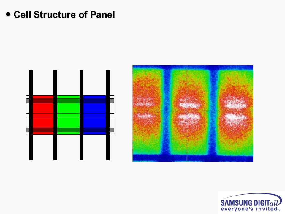 ● Cell Structure of Panel
