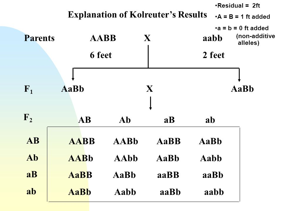 Explanation of Kolreuter's Results