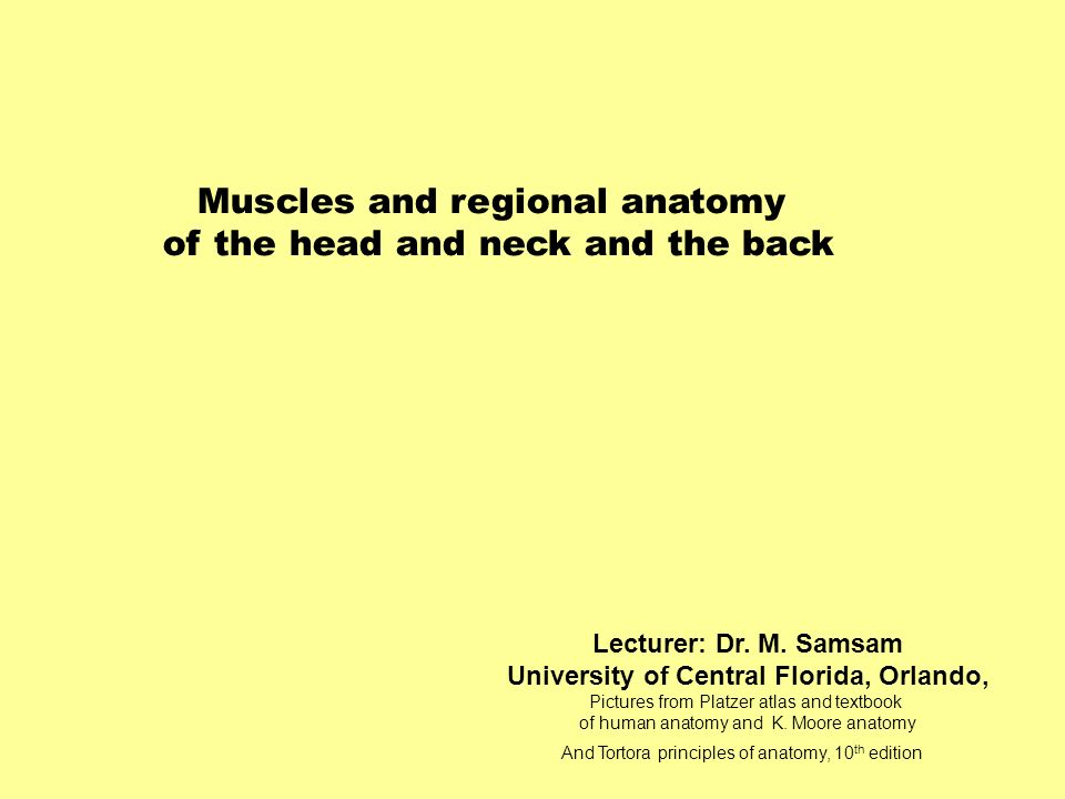 Muscles and regional anatomy of the head and neck and the back