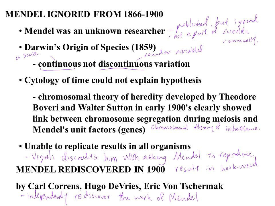 MENDEL IGNORED FROM 1866-1900 Mendel was an unknown researcher. Darwin's Origin of Species (1859) - continuous not discontinuous variation.