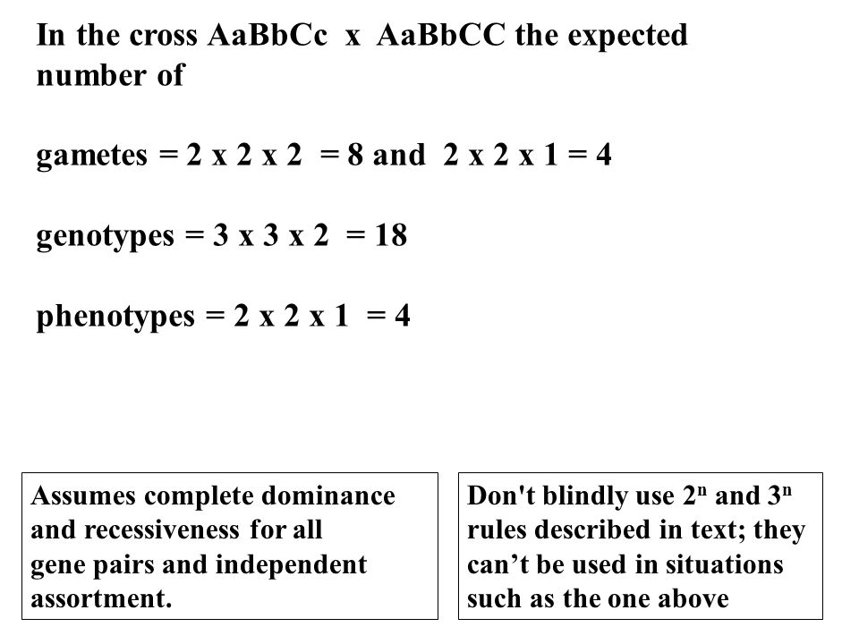 In the cross AaBbCc x AaBbCC the expected number of