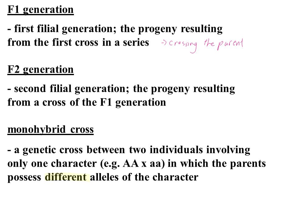 F1 generation - first filial generation; the progeny resulting. from the first cross in a series. F2 generation.