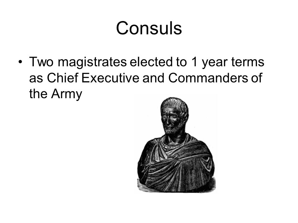 Consuls Two magistrates elected to 1 year terms as Chief Executive and Commanders of the Army