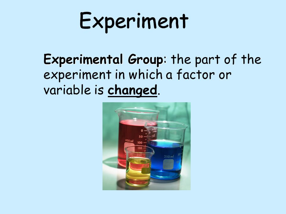 Experiment Experimental Group: the part of the experiment in which a factor or variable is changed.