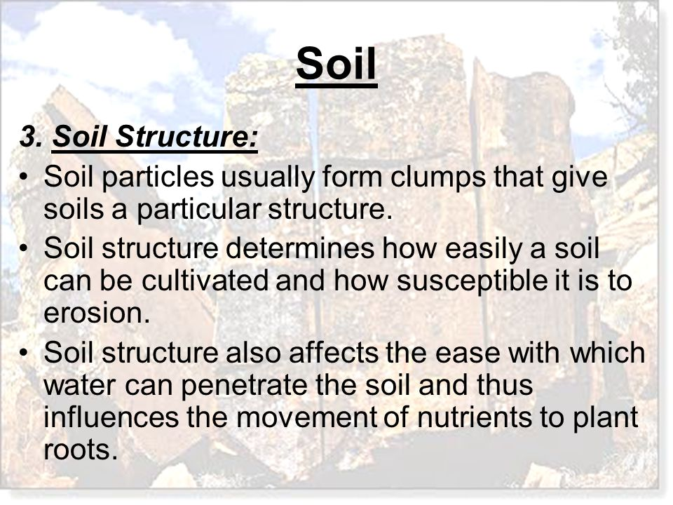3. Soil Structure: Soil particles usually form clumps that give soils a particular structure.