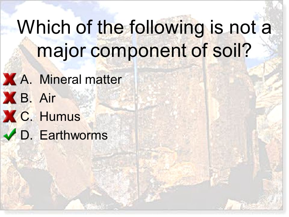 Which of the following is not a major component of soil