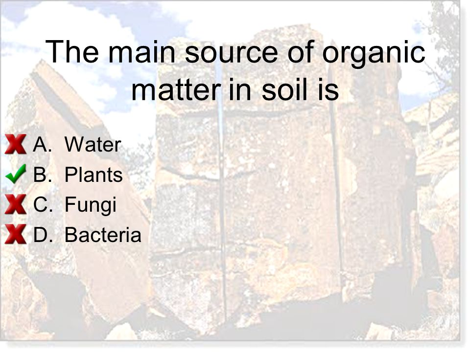 The main source of organic matter in soil is