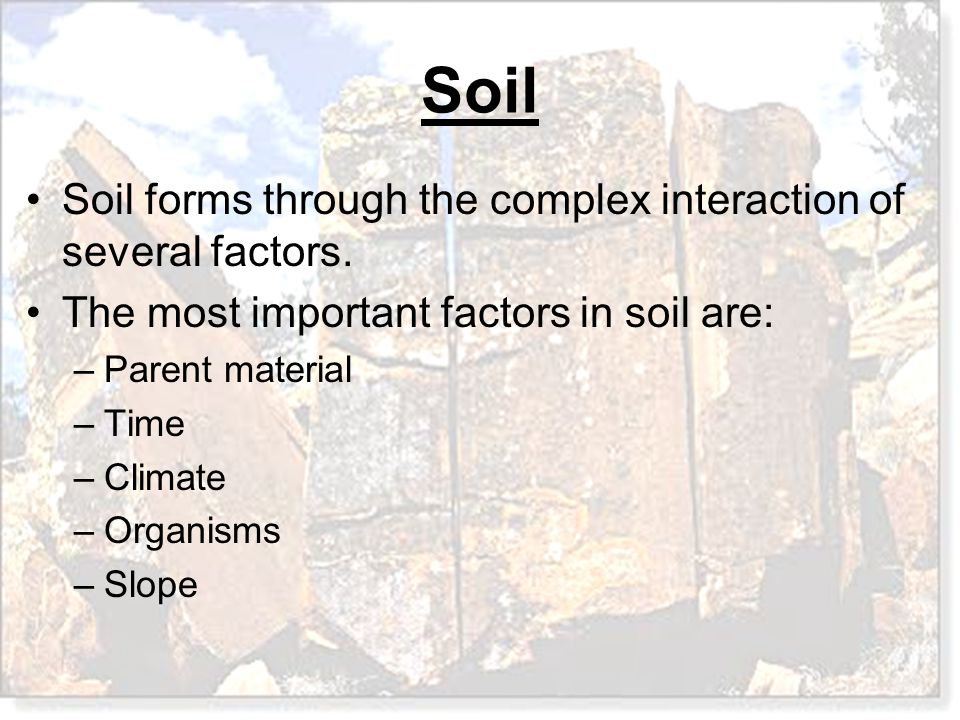 Soil forms through the complex interaction of several factors.