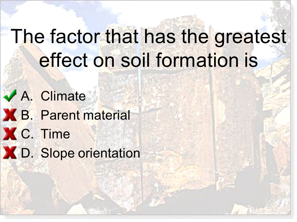 The factor that has the greatest effect on soil formation is