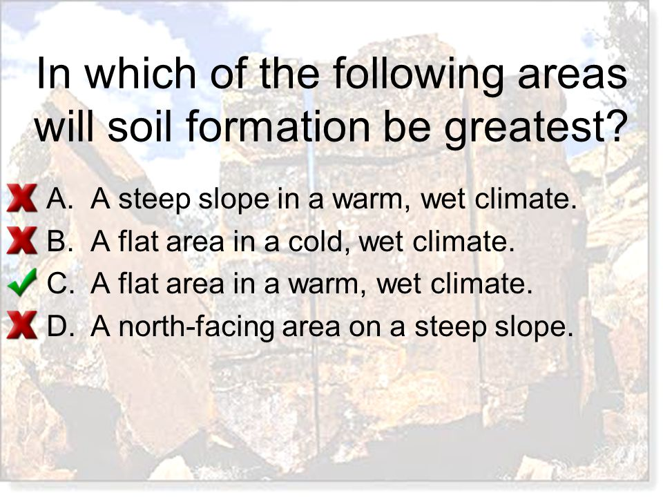 In which of the following areas will soil formation be greatest