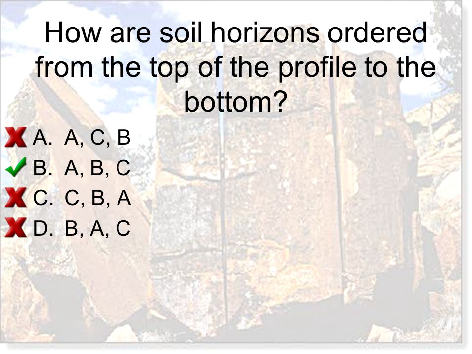 How are soil horizons ordered from the top of the profile to the bottom