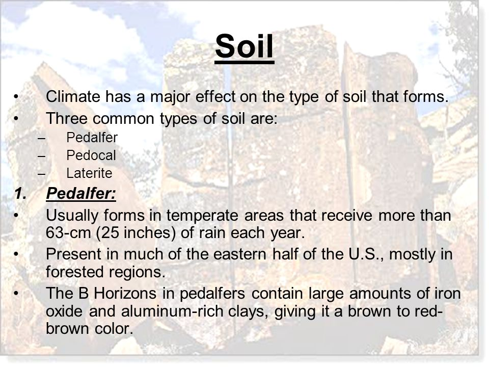 Climate has a major effect on the type of soil that forms.