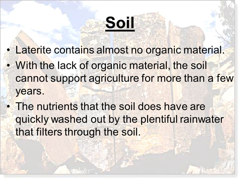 Laterite contains almost no organic material.