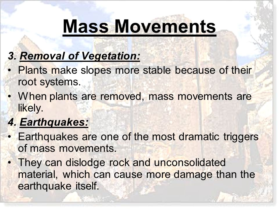 3. Removal of Vegetation: