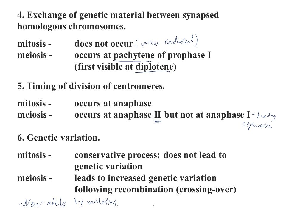4. Exchange of genetic material between synapsed