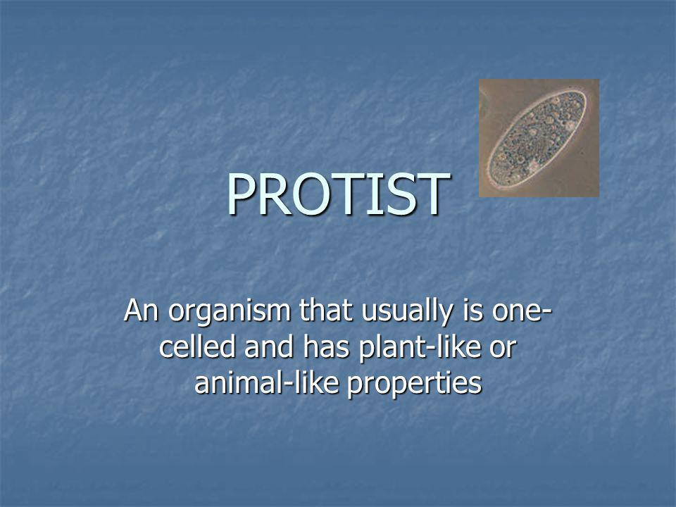 PROTIST An organism that usually is one-celled and has plant-like or animal-like properties