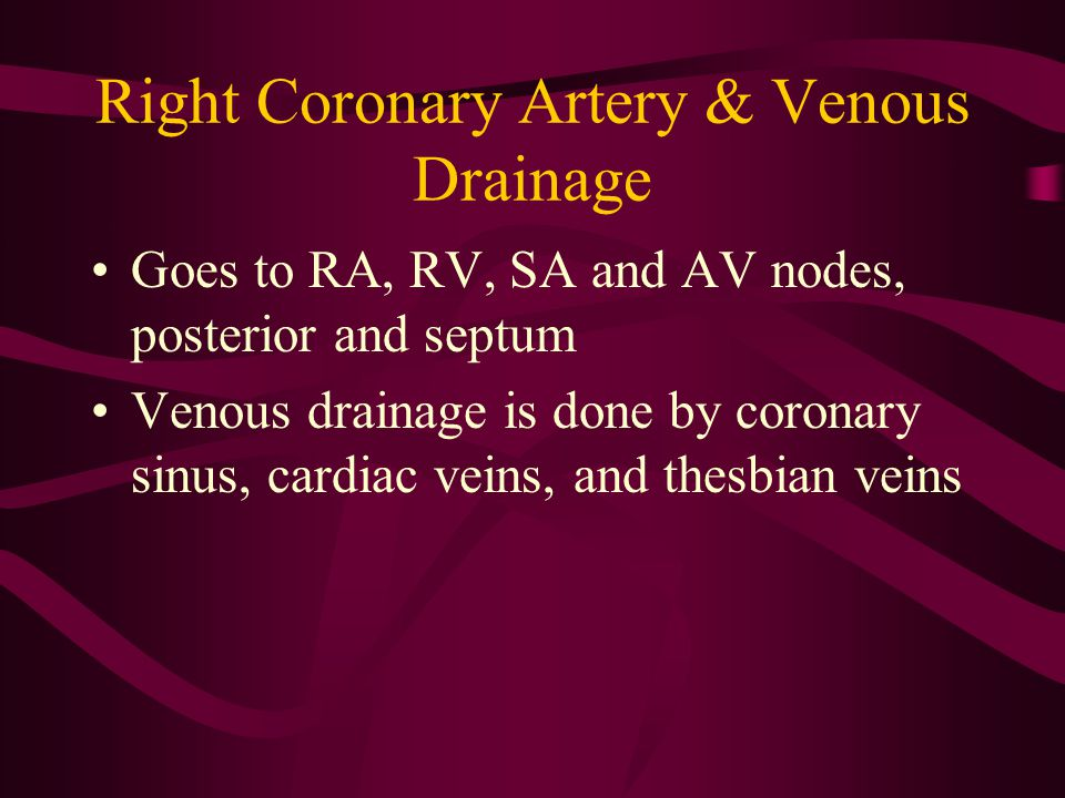 Right Coronary Artery & Venous Drainage