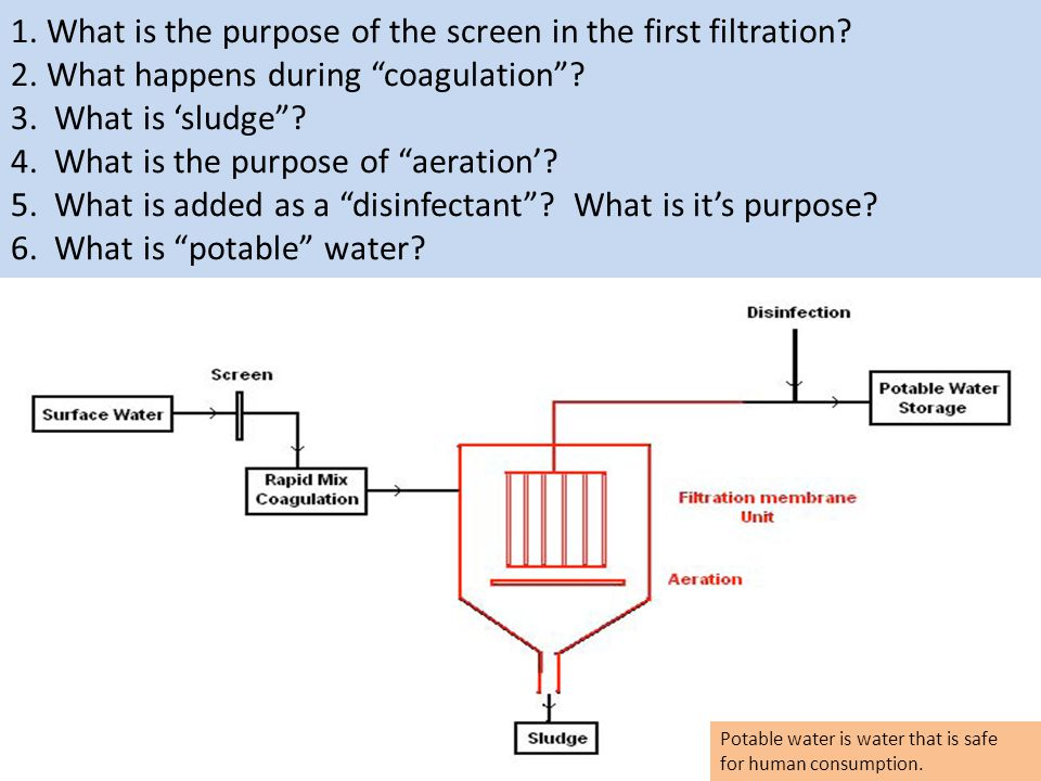 1. What is the purpose of the screen in the first filtration. 2