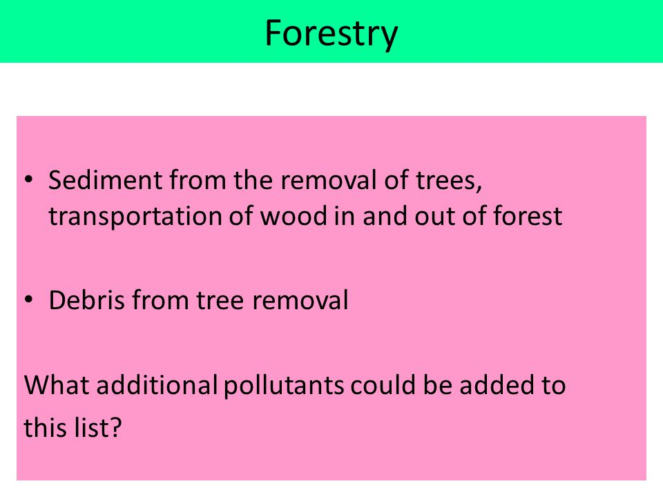 Forestry Sediment from the removal of trees, transportation of wood in and out of forest. Debris from tree removal.